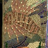 Lionfish Closer
